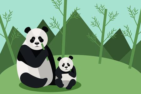 Wild panda eating bamboo