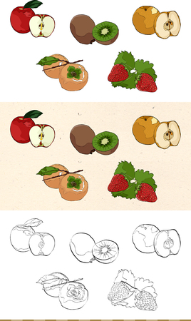 Set of vintage fruit monochromatic and colored icon