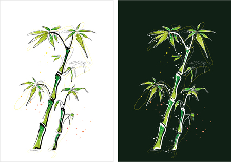 Two version background of bamboo tree sketch