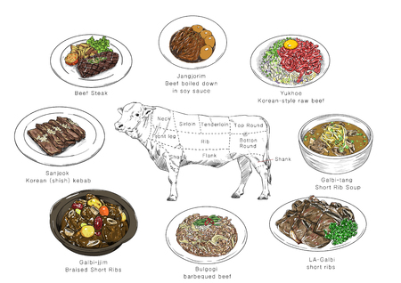 information of meat parts, RF illustration 002