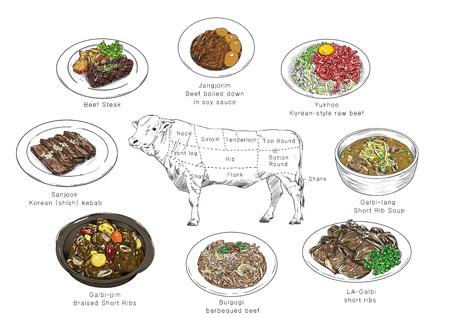 information of meat parts, RF illustration 002