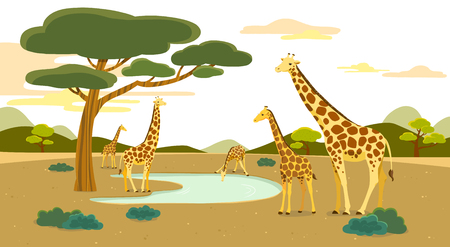 Peaceful wild animals, RF illustration 001