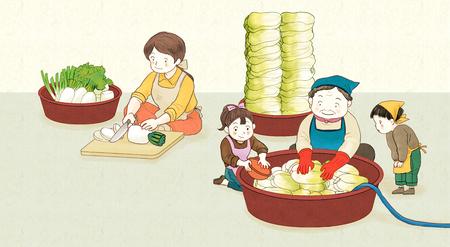 kimjang, kimchi-making for the winter 003 Illustration