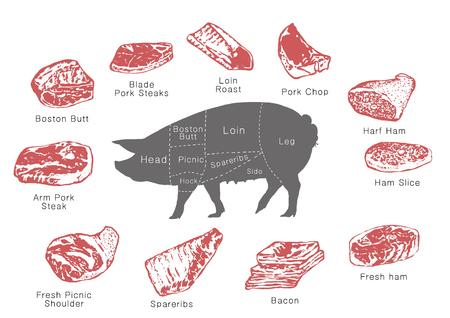 고기 부품 정보, RF 일러스트 007