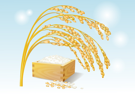 Fruit objects - the golden waves of grain and the rice Illustration