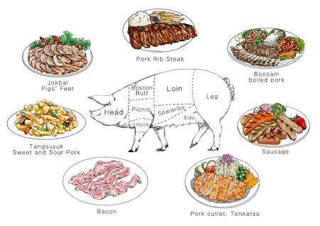 고기 부품 정보, RF 일러스트 008