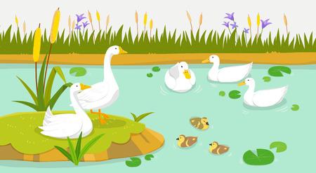 Peaceful wild animals, RF illustration 009