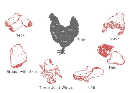 고기 부품 정보, RF 일러스트 003 일러스트
