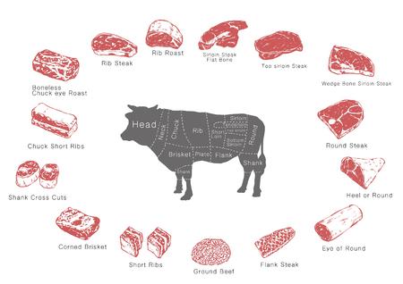 information of meat parts, RF illustration 001
