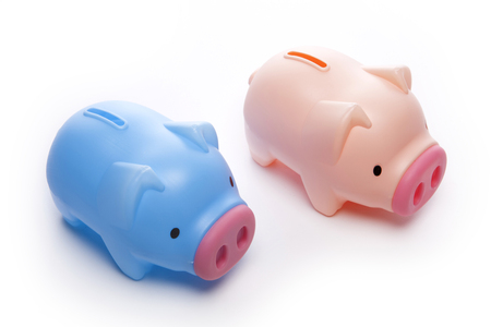 Two piggy banks on white background