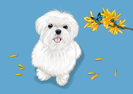 illustration of Pet - cute bulldog, Chihuahua, poodle Illustration