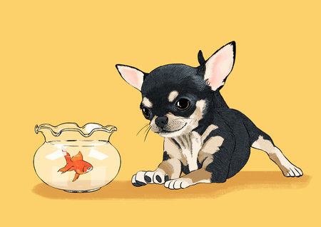 illustration of Pet - cute bulldog, Chihuahua, poodle, Maltese