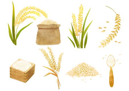秋のオブジェクトイラスト - 米を作る水田の異なるタイプ