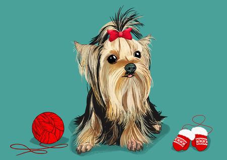 애완 동물 - 귀여운 강아지의 그림