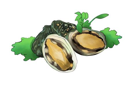 Foto de archivo - ilustración de alimentos frescos de temporada. tipo de hierbas, productos marinos con fondo blanco.