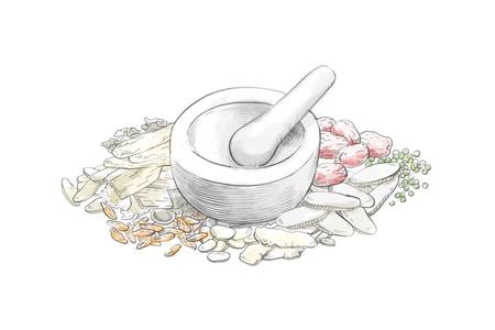 Vector hand drawn illustration of oriental medicine. medicinal herbs, oriental medical clinic 008