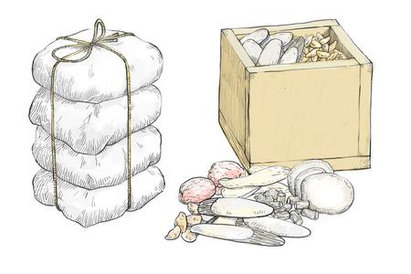 Vector hand drawn illustration of oriental medicine. medicinal herbs, oriental medical clinic 003
