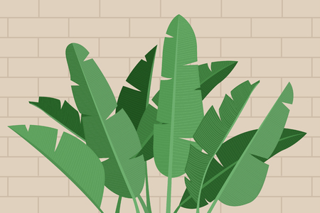 Tropical leaves vector illustration. Vektorgrafik