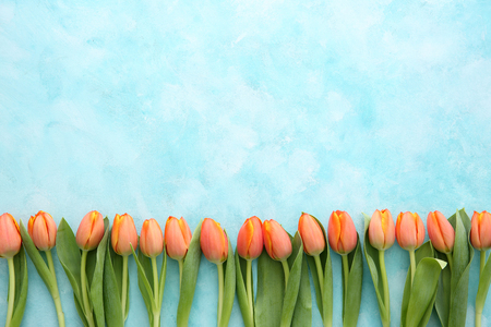 Beautiful flower collection Stock Photo. close up, isolated on background. vertical with copy space. 165