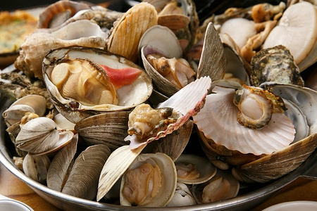 Steamed clams Foto de archivo