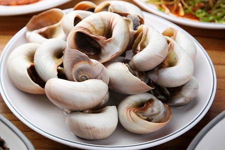 steamed whelks Stock Photo