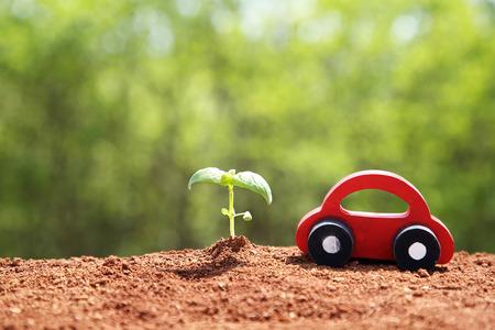 Ecology concept photo, gardening in a vegetable garden in spring 077
