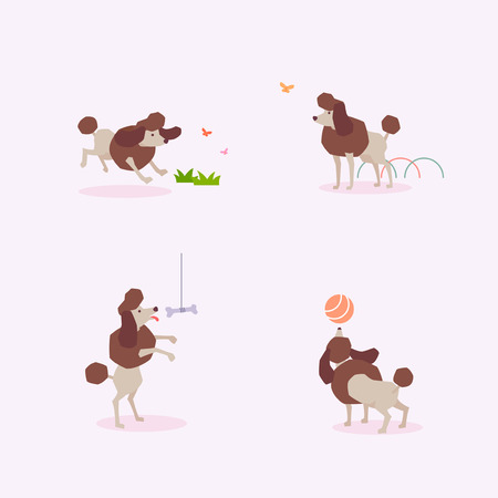 Animal icons collection vector illustration 006