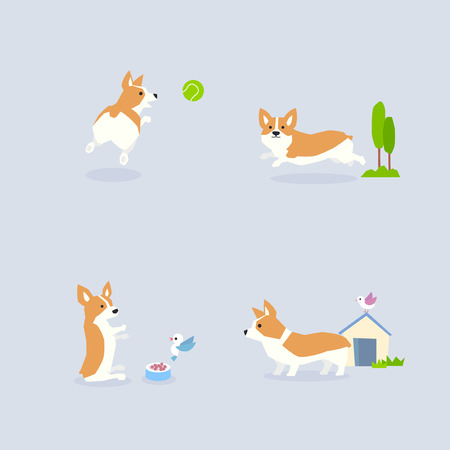 Animal icons collection vector illustration 009 矢量图像
