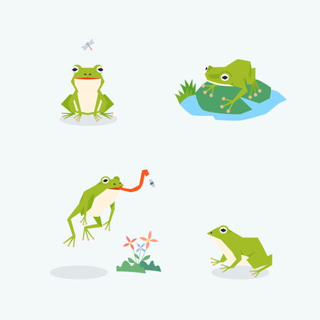 Animal icons collection vector illustration 054 向量圖像