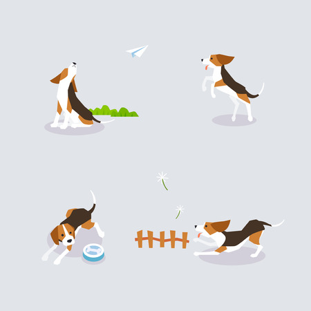 Animal icons collection vector illustration 008