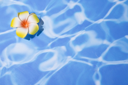 Summer holiday concept photo. vacation items and beach accessories in swimming pool or yellow background. 028