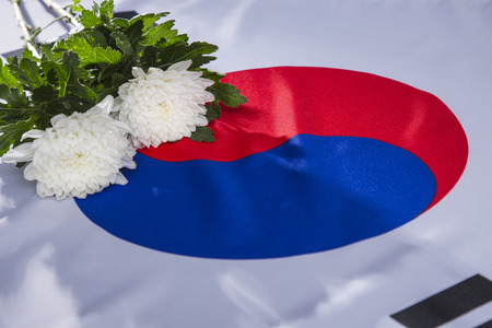 An emblem of Korea and Koreans concept, with national flag Taegukgi, national flower Rose of Sharon and so on. 110