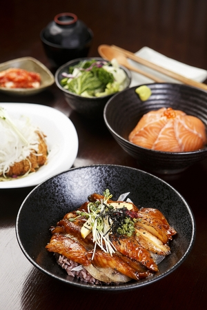 Eel donburi, japanese rice bowl with eels