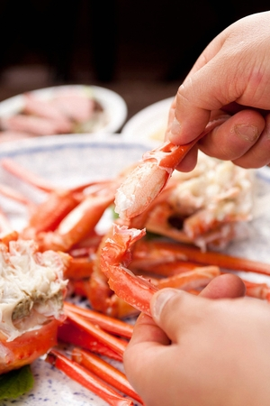 Hands picking up the pincers of steamed snow crab on round plate