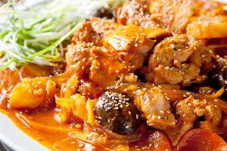 Braised spicy chicken in red pepper paste with seasoned green onions in bowl Imagens