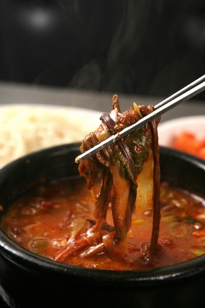Hot spicy meat stew with bracken in pot, with chopped noodles and kimchi