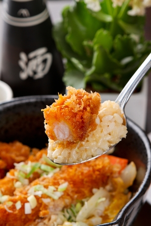 spoon scooping rice bowl with fried shrimps