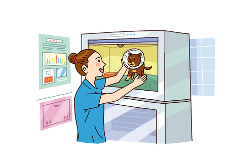 Vector illustration of Examination and healthcare for pets illustration.