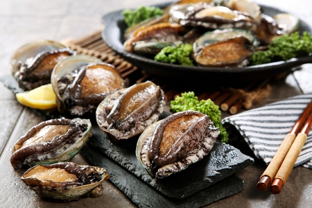 fresh live abalones on plate and table Imagens