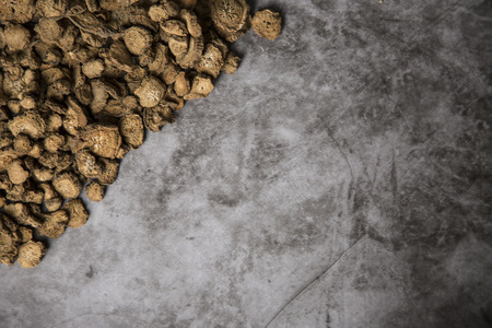 Close up of winter food ingredients Isolated on white background - salsify, oyster, mussel, shrimp and clam