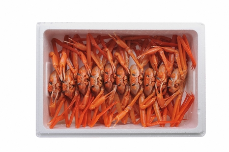 red snow crabs in styrofoam box, white background