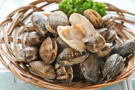 fresh manila clam in basket