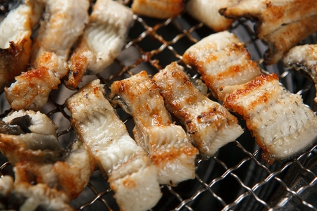 grilled eel from grill