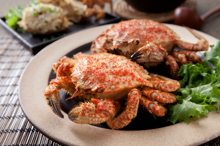 two horsehair crabs on plate