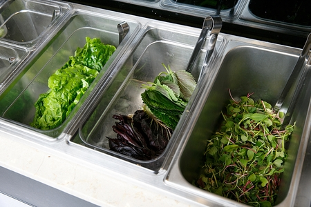 Lettuce, perilla leaf and microgreens in stainless boxes