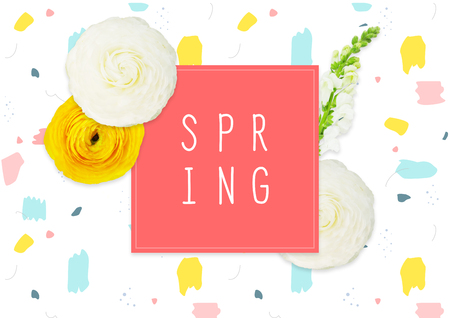 Spring background with ranunculus flowers.