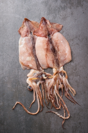 two dried squids on grey plate