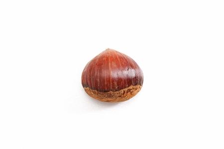 one chestnut in white background