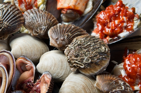 assorted seashells such as short-necked clams and pen shells Stockfoto