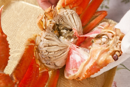 hand splitting snow crab into half Stock Photo